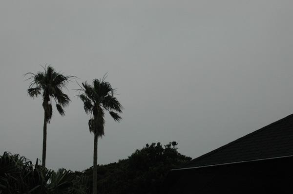 2013-07-04 16:41:52