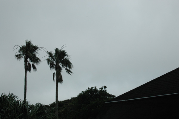 2013-07-08 08:43:13