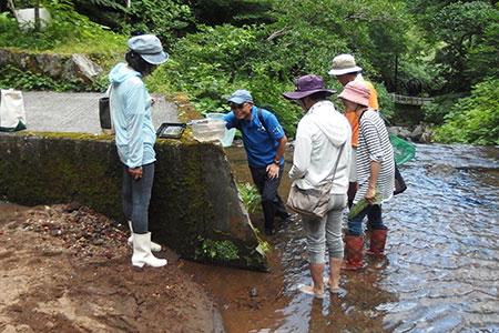 川の生き物観察会