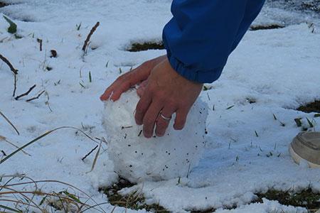 雪だるま作ろ